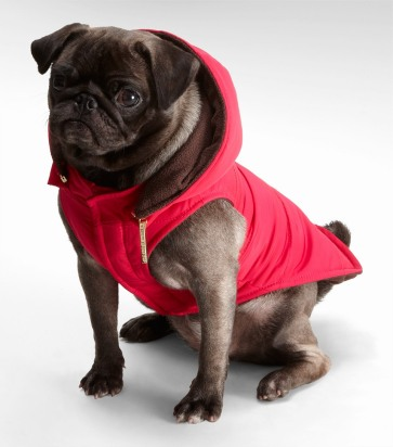 tory-burch-pink-nylon-puffer-dog-coat-product-1-2651643-410823779